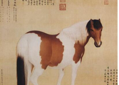 [古玩玉器]郎世宁,将绘画中西合璧颇有贡献